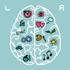 Linke und rechte Gehirnhälfte  Hemisphäre für Kreativität und Rationalität © Karl