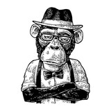 Monkey hipster with arms crossedin in hat, shirt, glasses and bow tie - 157329541