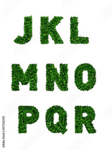 Alfabety zieleni liście na białym tle