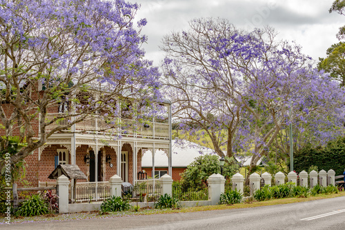 Jacaranda trees in full bloom outside of a beautiful Victorian house in South Australia.