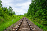 Empty railway track in green forest
