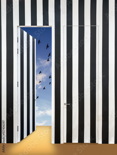 Fototapeta Modern interior with a wall in black and white stripes. Invisible doors and one open door overlooking the sky with birds and light clouds.