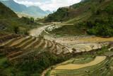 terraced rice fields, SA PA, VIETNAM, APRIL 2017