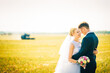 the bride and groom on the background of field