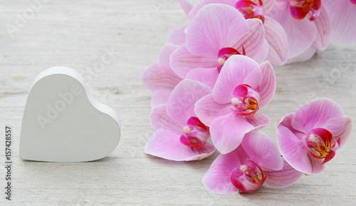 branche d'orchidée rose et coeur blanc,décoration,romantique - 157428557