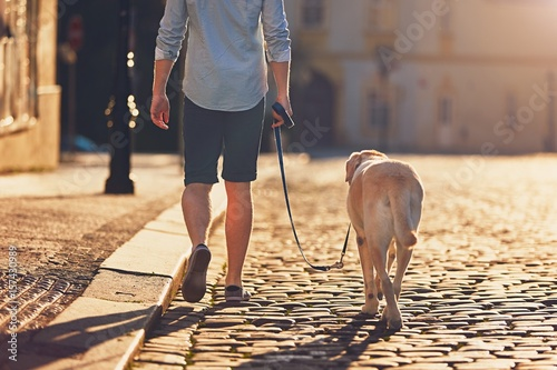 Morning walk with dog
