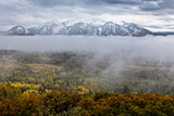 Foggy Mist in the Rocky Mountains of Colorado