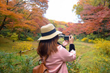 Photographer is shooting the nature scene in autumn season in Japan.