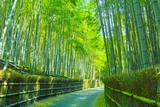 Fototapeta Bambus - 京都 竹林と小道 © 7maru