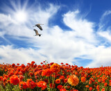 Two large birds flying over flower
