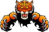 Tiger Attack Concept. Vector illustration