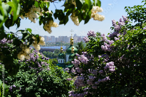 Poster Kiev Kyiv city view in spring