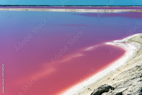 Foto op Canvas Rio de Janeiro Colorful pool of water in Rio Lagartos, Mexico