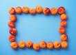 Quadro Apricots