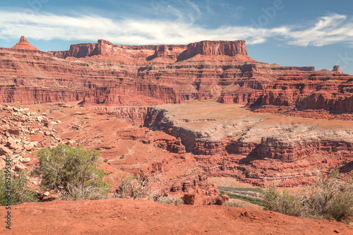 Deurstickers Koraal Canyonlands River Canyon