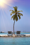 Lonely palm tree on the tiny island in the sea. Maldives. - 157694558