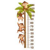 growth measure with monkey on palm  - vector illustration, eps
