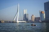 The skyline of Rotterdam with the Erasmus bridge in the Netherlands