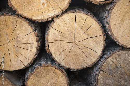 Firewood for the fireplace, barbecue. A man chopping wood for a barbecue. Folded firewood