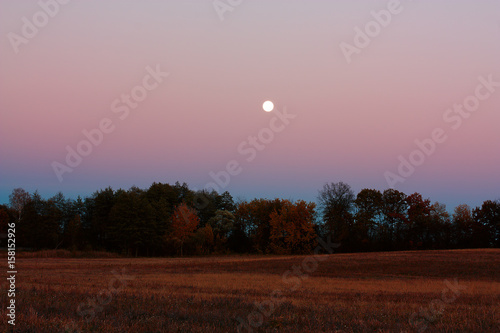 Landscape with an evening moon