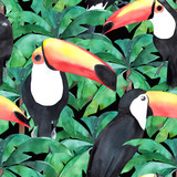 Watercolor seamless pattern with tropical birds - toucan. Hand drawn illustration