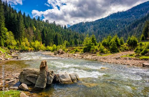 Papiers peints Rivière de la forêt River among the forest in picturesque mountains in springtime
