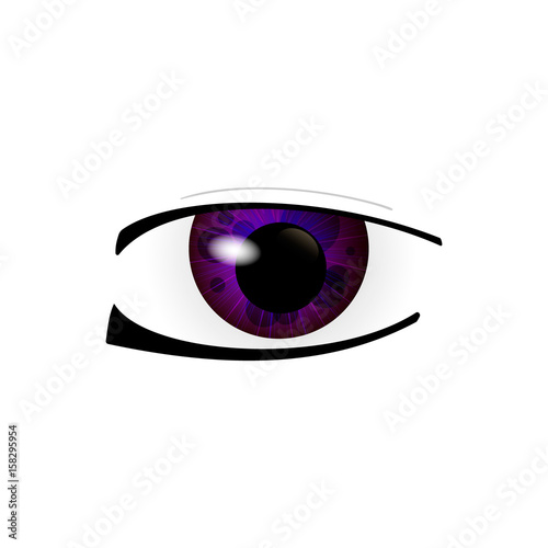 Eye. Human eyes closeup. Beautiful big eyes. Vector illustration - 158295954