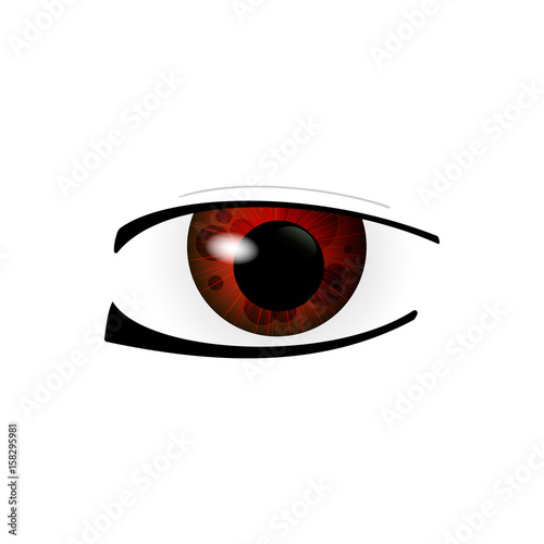 Eye. Human eyes closeup. Beautiful big eyes. Vector illustration - 158295981