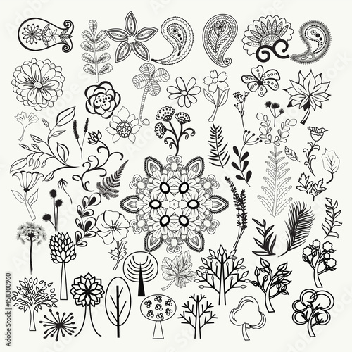 big collection of hand-drawn black and white ornate flowers, plants and leaves - 158300960