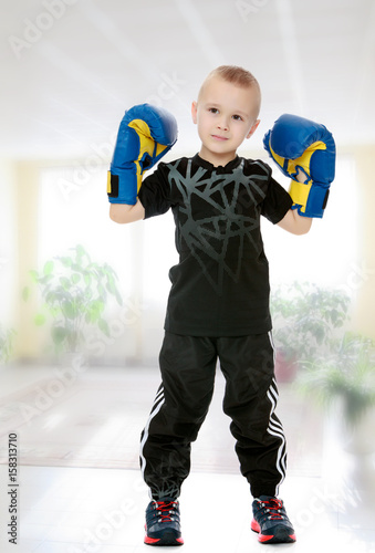 Póster little boy in Boxing gloves.