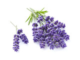 Lavender with leaves - 158325923