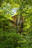 Dormir dans une cabane dans les arbres - 158338576