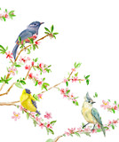 invitation card with cute birds on flowering twigs. watercolor painting
