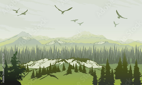 Landscape with forest and mountains. Sunrise Sky