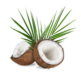 close-up of a coconuts on white background
