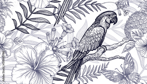Flowers and birds seamless pattern. Hand drawing. Black and white. Palm branches, pineapples, hibiscus, butterflies, parrots. Vector art illustration. Template for fabrics, paper, summer textiles. - 158443786