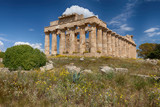 Ancient Greek temple in Selinunte, Sicily, Italy - 158444335