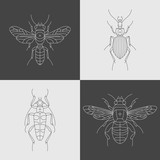set of four insects design elements - 158484770