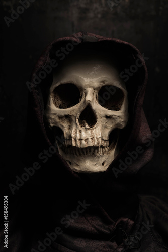 Still life art photography with skull Poster