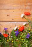 Blumenwiese - Sommerblumen vor Holzwand