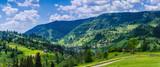 Background of Carpathian mountains landscape in Ukraine