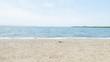Quadro 夏の海