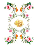 watercolor painting of leaves and flower, on white background - 158576326