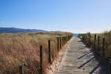 Pasarela de madera en un paisaje natural de la costa