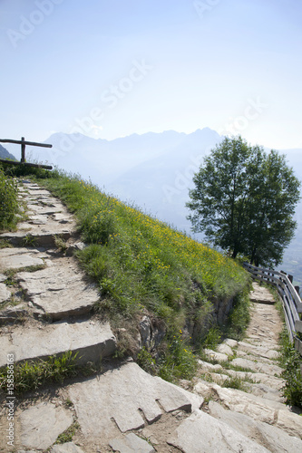 Wanderweg in den Alpen Poster