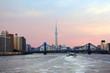 Токио. Мо�т через реку Сумида.