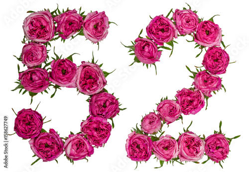 Poster Arabic numeral 52, fifty two, from red flowers of rose, isolated on white backgr