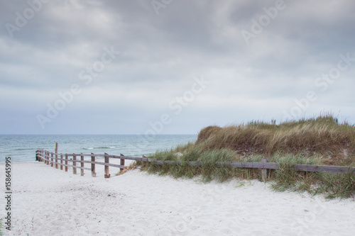Zingst Nationalpark Vorpommern - 158645995