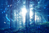 Blue foggy forest fairytale with spiral circle fireflies bokeh background. Color filter effect used.