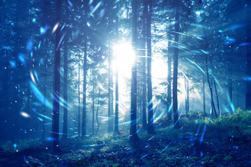 Blue foggy forest fairytale with spiral circle fireflies bokeh background. Color filter effect used. © robsonphoto